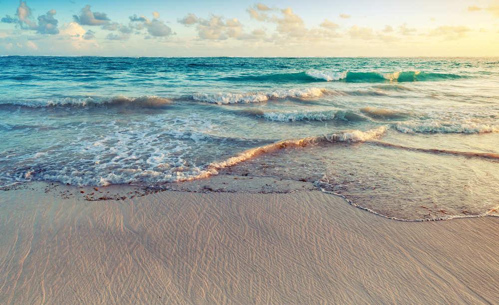 Disfruta del maravilloso mundo de la mar